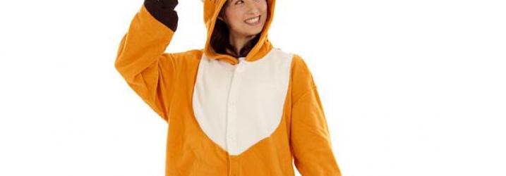 Kigurumi - pyjama japonais